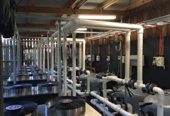 pool heating products, filtration, and services for both domestic and commercial projects
